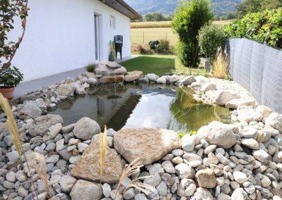 bassin paysagiste